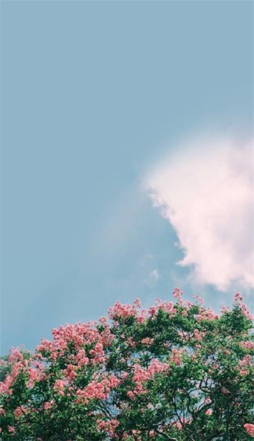 温馨表达亲情的句子 感恩亲人简短的句子